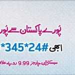 Telenor 24 hour Poora Pakistan Offer