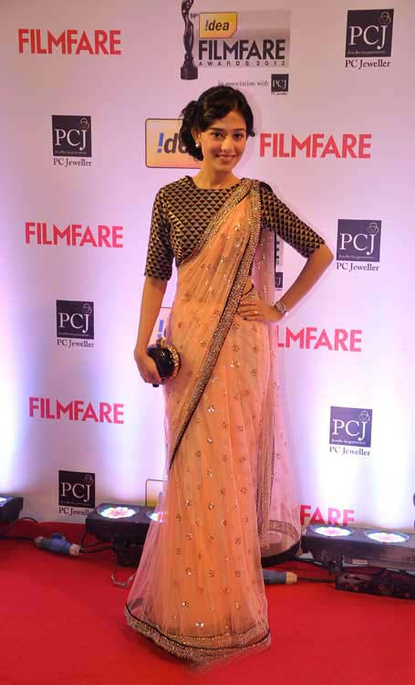 Bollywood Film Fare Awards Shows 2014 Pictures