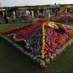 Karachi 3 days Flower Exhibition