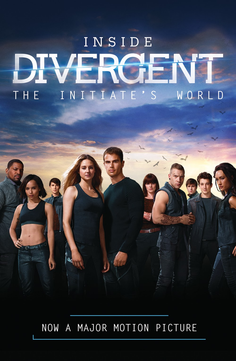 Hollywood Science Fiction Film Divergent 2014 Poster