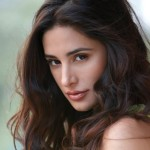Nargis Fakhri suffered muscle cramps during item song of Kick