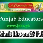 Punjab Educators Jobs test result 2015
