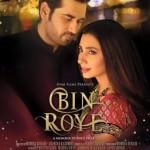 Bin Roye Film