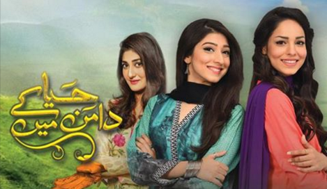 Haya Kay Daman Main on Hum TV