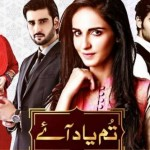 Tum Yaad Aaye on ARY Digital