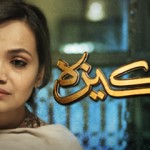 Pakeeza on Hum TV