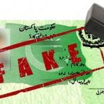 NADRA Identifies 13,000 Fake Family Members