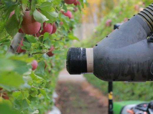 Fruit Picking Farmer Robot
