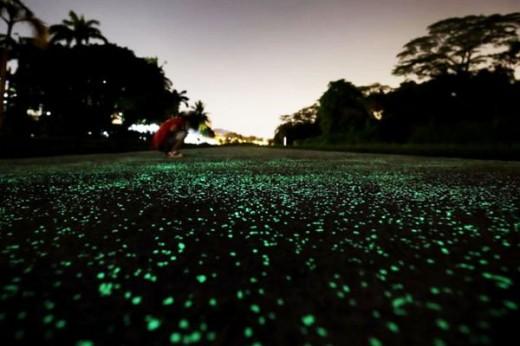 Roads That Shine At Night