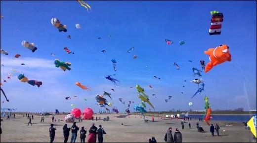Germany Annual Kite Festival