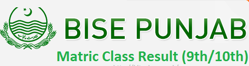 BISEs Punjab 9th Class Result 2017