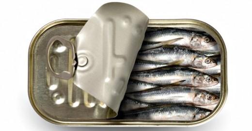4. Sardines