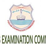 PEC-Punjab-Examination-Commission-Result-2017-Grade-5-and-8