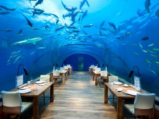 maldives-sea hotel