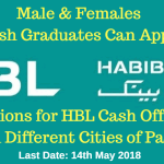 HBL Cash officer Jobs