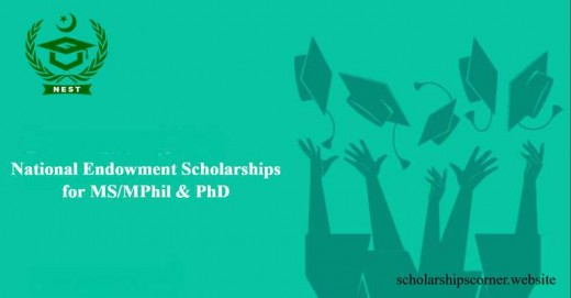 Nest Scholarships For Ms/Mphil And Ph.D Pakistani Students In 2019