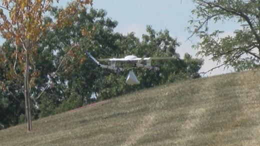New tree drone