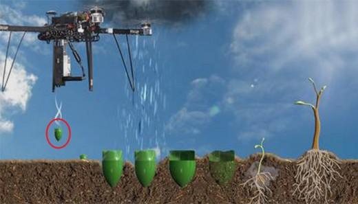 Tree Drone