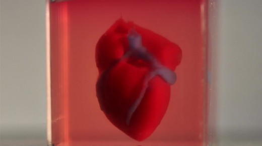 3D heart scienece