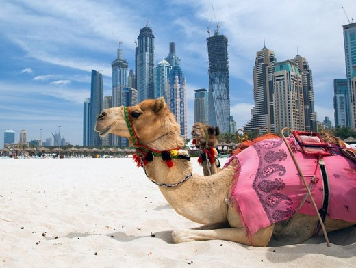 Beautiful Uae Ready to give Multi Entry Visa for Tourists