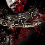 Murder 3 2013 Movie Poster