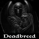Movie DeadBreed 2014 Poster