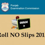 PEC 5th class Roll No Slips 2015