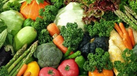 3. Vegetable protein