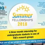 ICIQ Summer Fellowships 2018