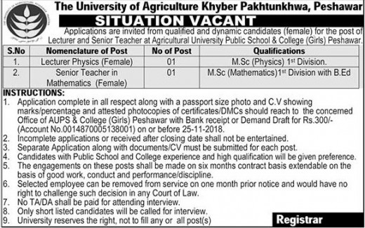 Jobs In Agriculture University